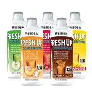 Fresh Up Concentrate 1 L
