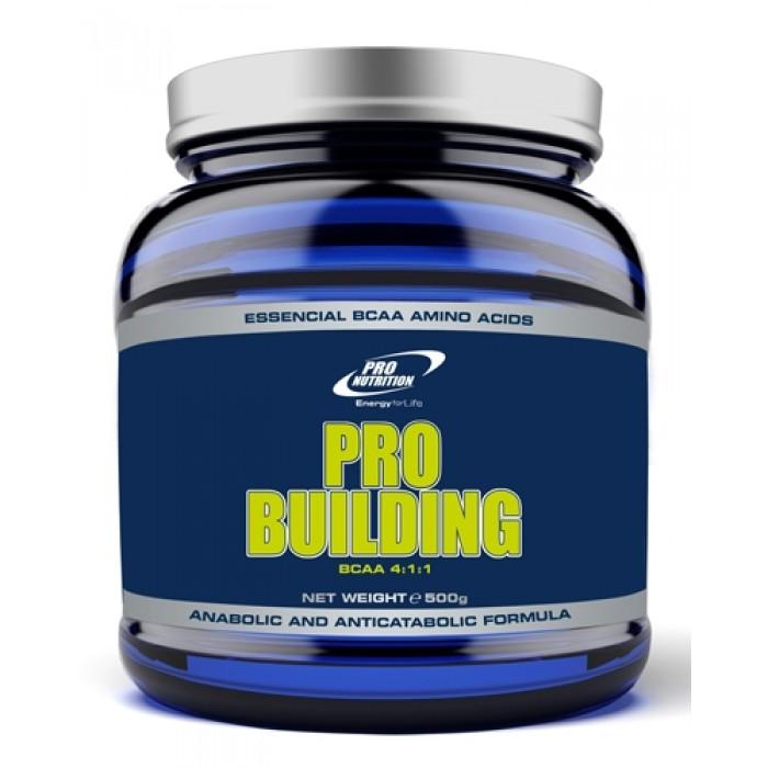 Pro Building BCAA 4:1:1 (500 гр)