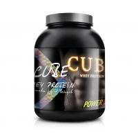 POWER PRO CUBE WHEY PROTEIN 1 КГ (БАНКА)