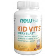kid vits berry blast (120 Chewables)