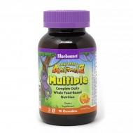 Мультивитамины для детей (Rainforest Animalz Multiple) 90 жевательных конфет со вкусом апельсина