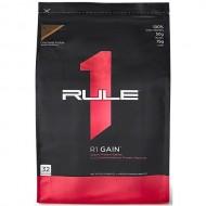R1 GAIN (4.5 кг)